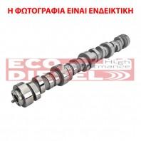 Εκκεντροφόρος άξονας κινητήρα - Camshaft - 038109101AH
